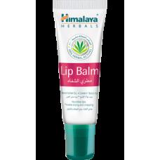 Himalaya Herbals Lip-Balm, 10gm